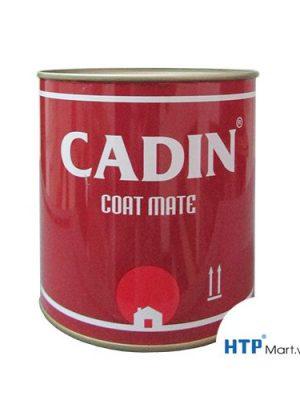 Đại lý bán sơn lót CADIN cho sắt kẽm tại Tây Ninh